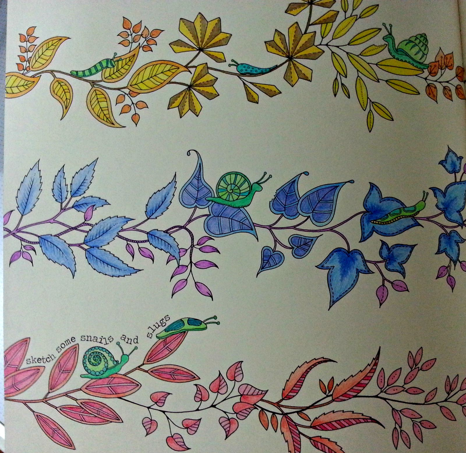 Being So Immersed In Coloring My Secret Garden Nengkoy