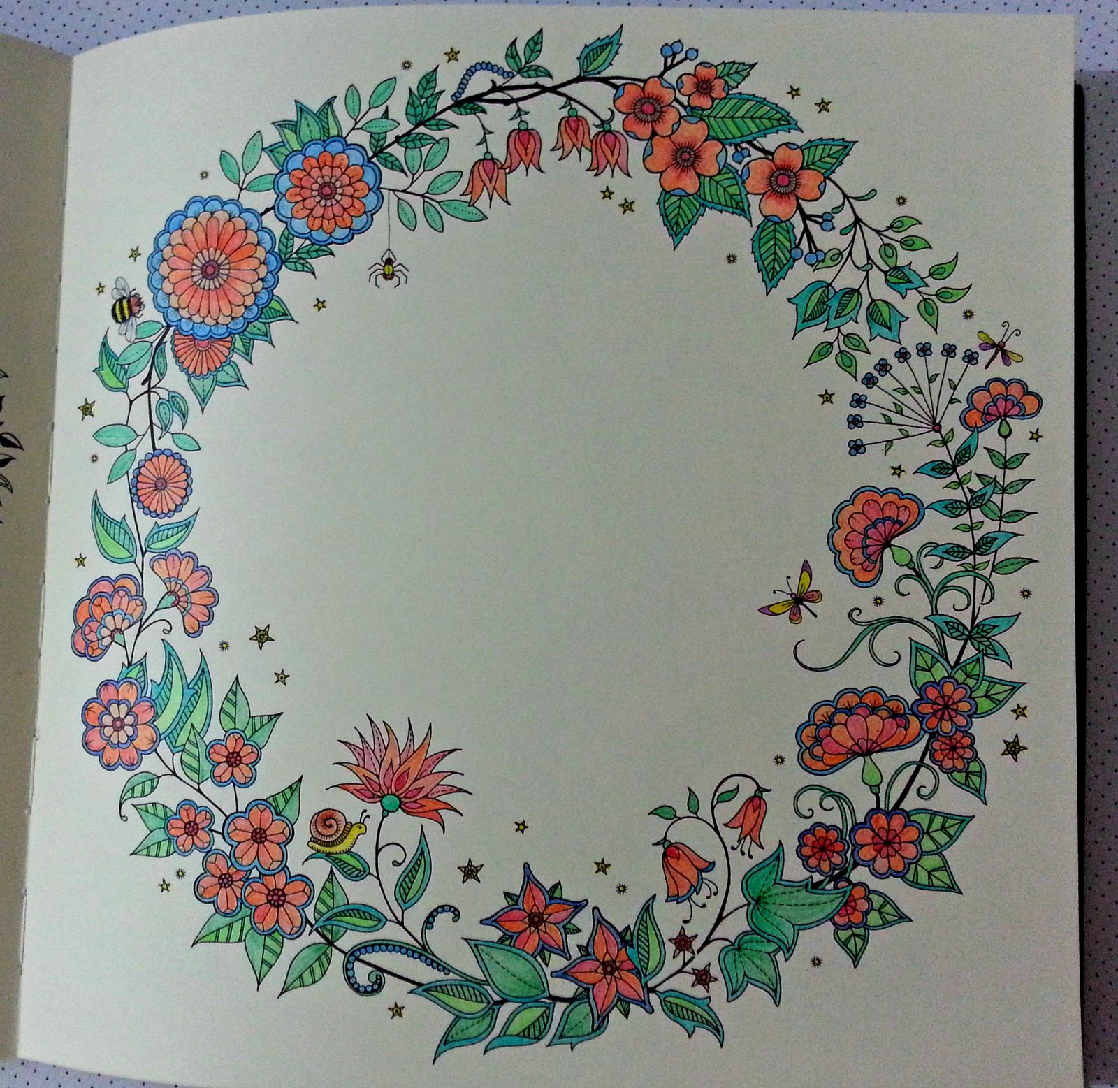 the book itself uncolored is gorgeous my first venture - My Secret Garden Coloring Book