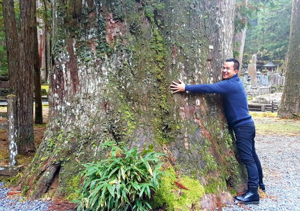 hugging a massive tree at okunoin...