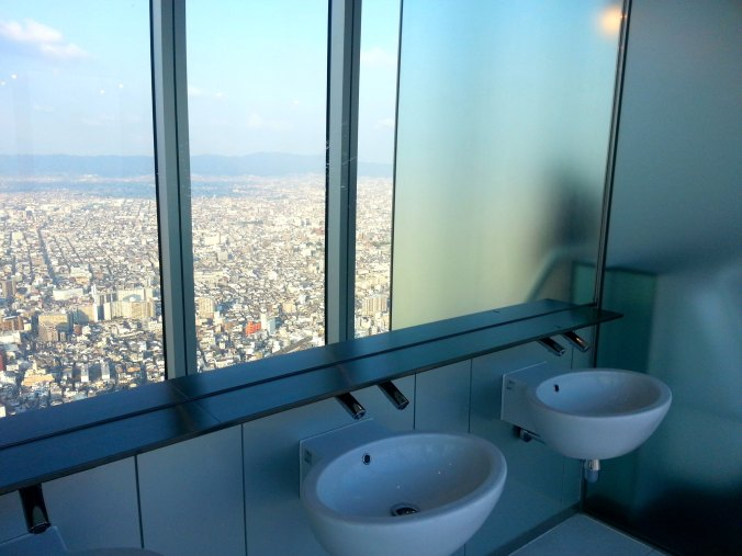 one rare view for a toilet!