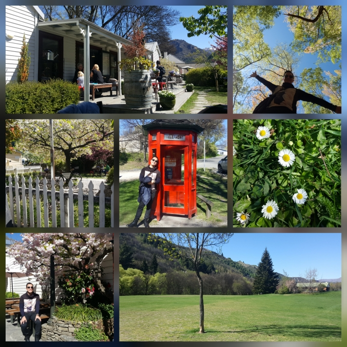 colors of arrowtown